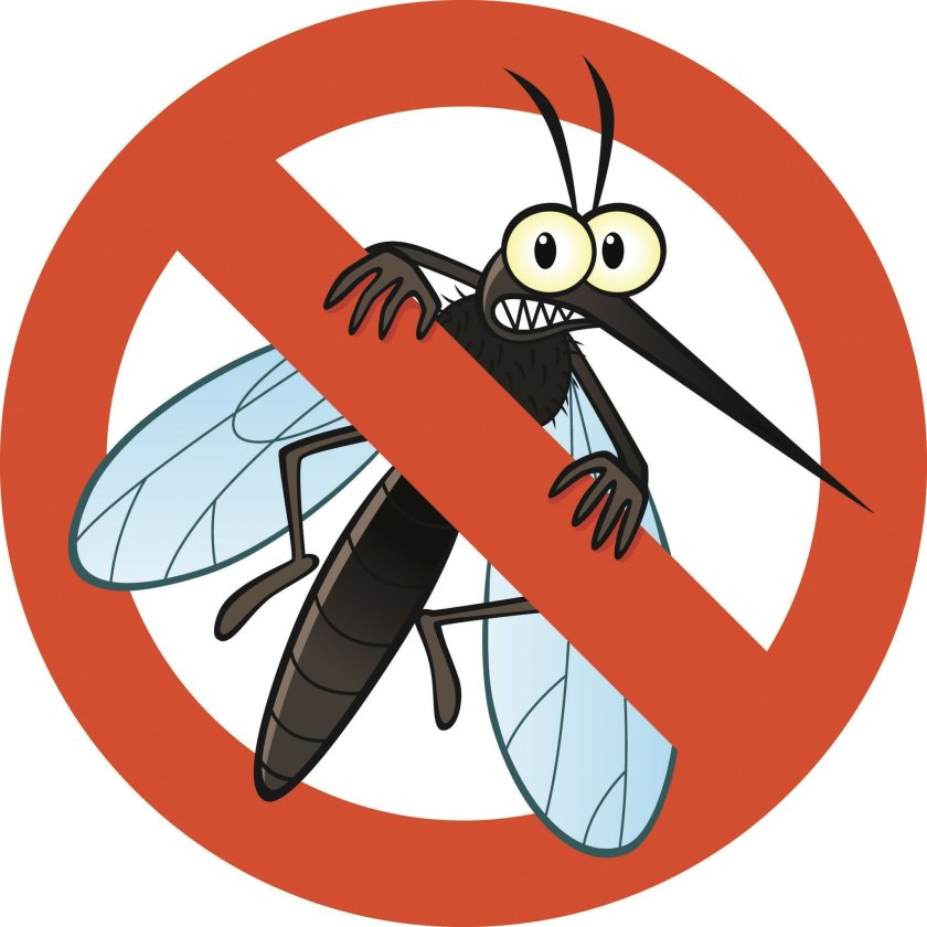 Mosquito clipart hurt, Mosquito hurt Transparent FREE for.