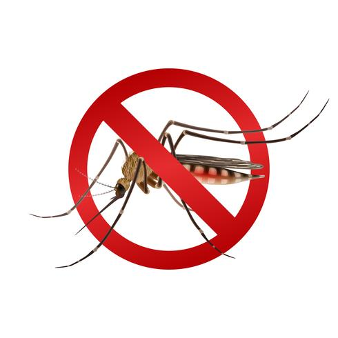 Mosquito stop sign.