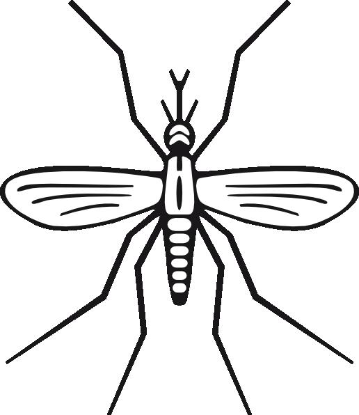 Cartoon Mosquito Clipart.