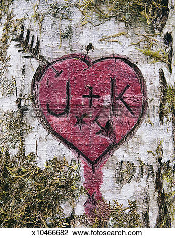 Stock Photo of J+K initials and heart symbol carved in moss.