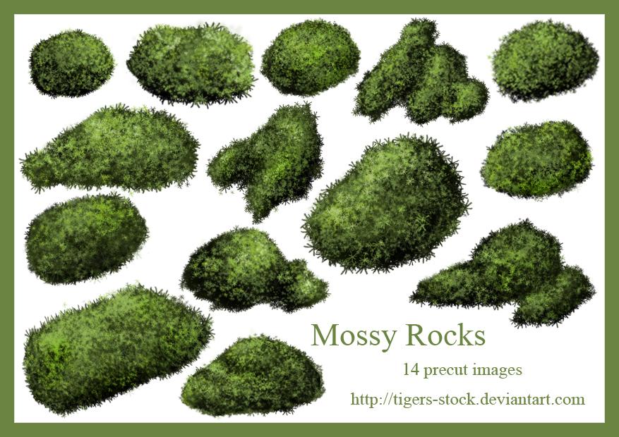 277Mossy Rocks by Tigers.