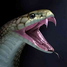 Mean Green Cobra Snake With Fangs Clipart.