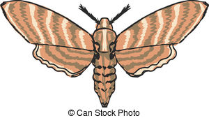 Moth Illustrations and Clipart. 32,829 Moth royalty free.