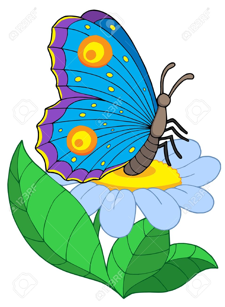 Butterfly With Flower.