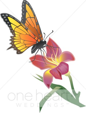 Moth on flower clipart - Clipground