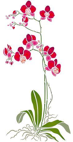 Grandes fleurs d'orchidées Stencil. Grand Phalaenopsis Stencil.
