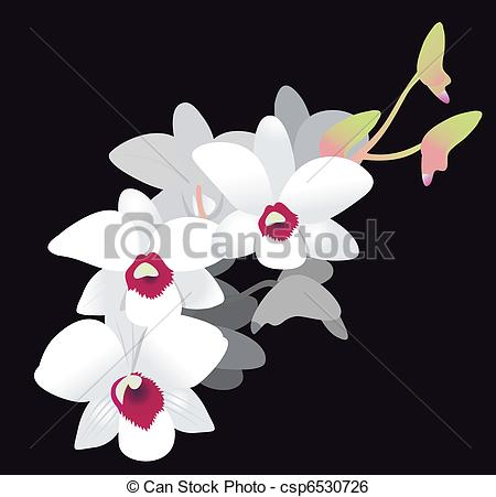 Moth orchid Illustrations and Clipart. 38 Moth orchid royalty free.