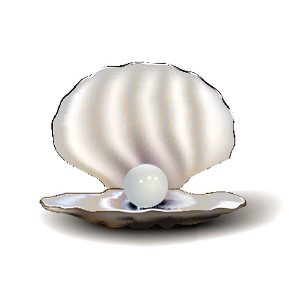 Oyster Pearl Clip Art, Vector Images & Illustrations.