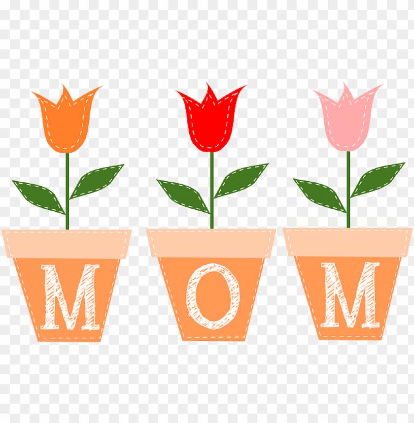 mom, tulips, flower, flowers, spring, cute, tulip.
