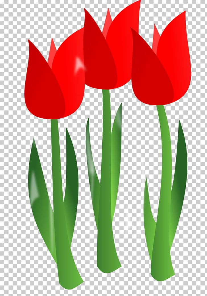 Mothers Day PNG, Clipart, April Flowers, April Flowers.