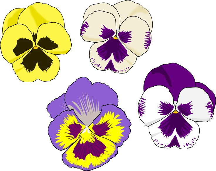Mothers Day Flowers Clipart Pansies.