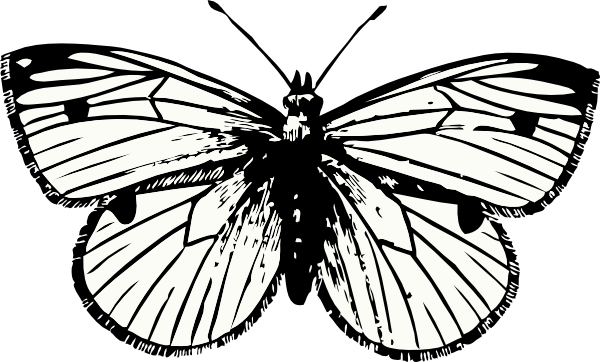 Clip Art Black And White Moth Clipart.