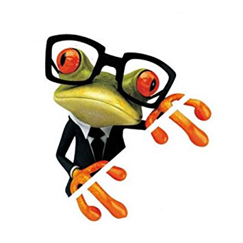 S2S Eayglass Peep Frogs Funny Car Stickers Window Decal Graphics.