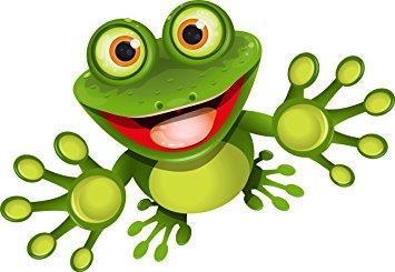 No K 0024 Sticker funny frog 8 x 12 CM frog Shape funny, cool.
