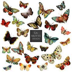 Motte clipart #15