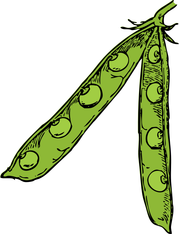 Motte clipart #16