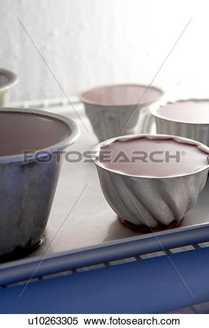 Stock Image of Jelly in metal moulds on metal tray in fridge/ step.