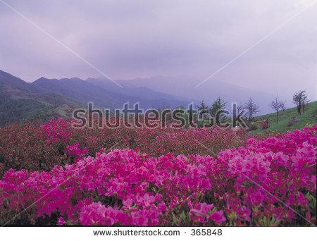 Mount azalea clipart #8