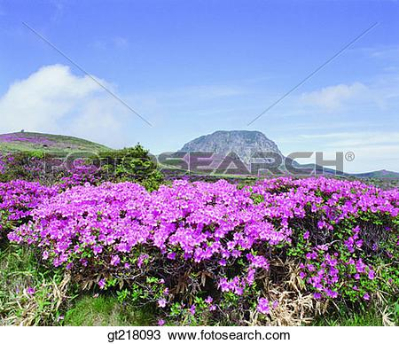 Stock Photo of exterior, day, daytime, daylight, Hanfa mountain.