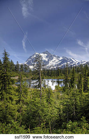 Stock Photograph of Mount Shuksan, as seen from Heather Meadows in.
