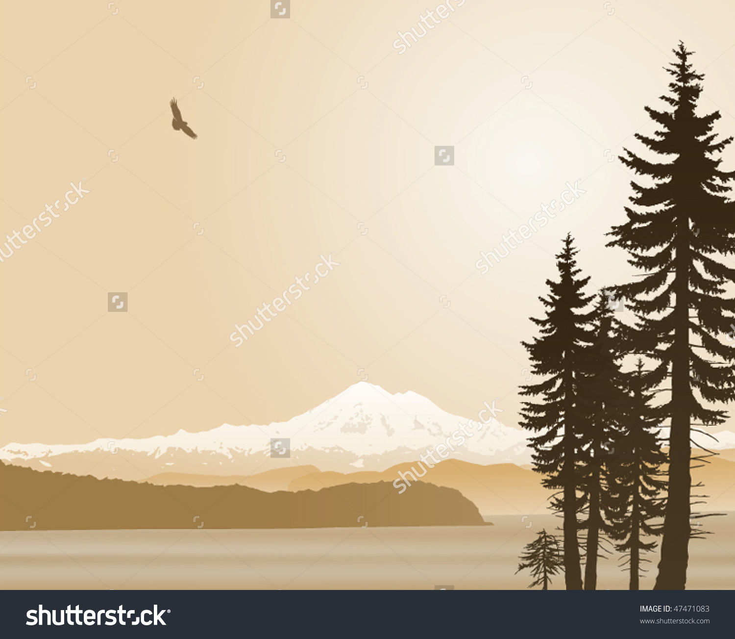 Mount Baker Washington State Vector Illustration In Sepia. Looking.