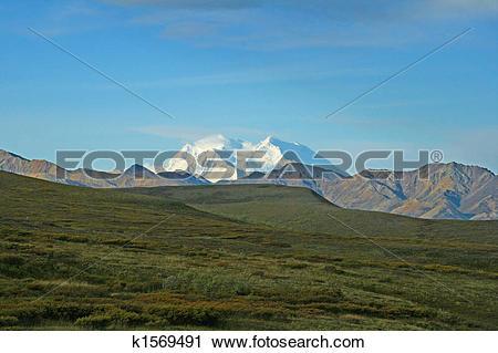 Stock Photography of Mount Denali/McKinley k1569491.