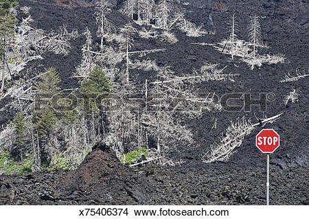 Stock Photo of Lava flow on Mount Etna, Sicily x75406374.