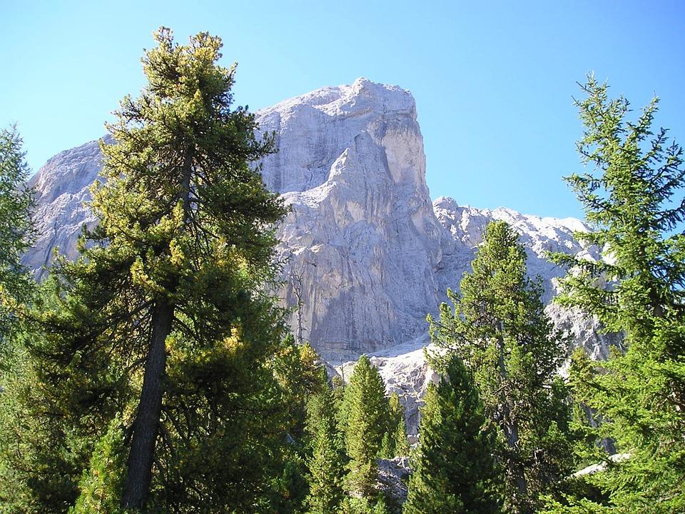 Free photo Trees Dolomites Mount Kofel Wall Mountain Bike.