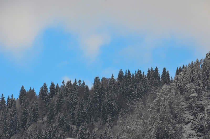 Mount Kofel Dressed in Snow.