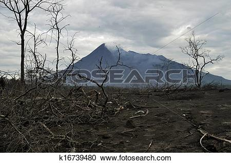 Stock Photography of Burnt Area from Mt. Merapi Volcano k16739480.
