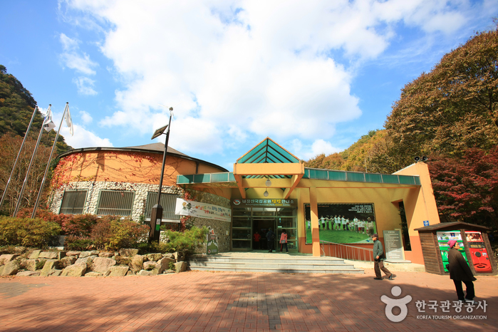 Naejangsan National Park (내장산국립공원).