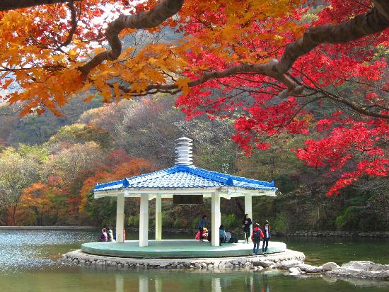 Naejangsan National Park (Jeongeup, South Korea): Top Tips Before.