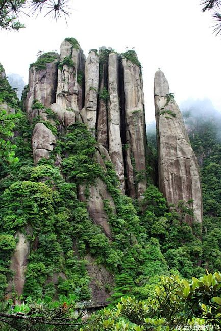 Rock forest in Mt Three Purity (Sanqing Shan), a Daoist site in.