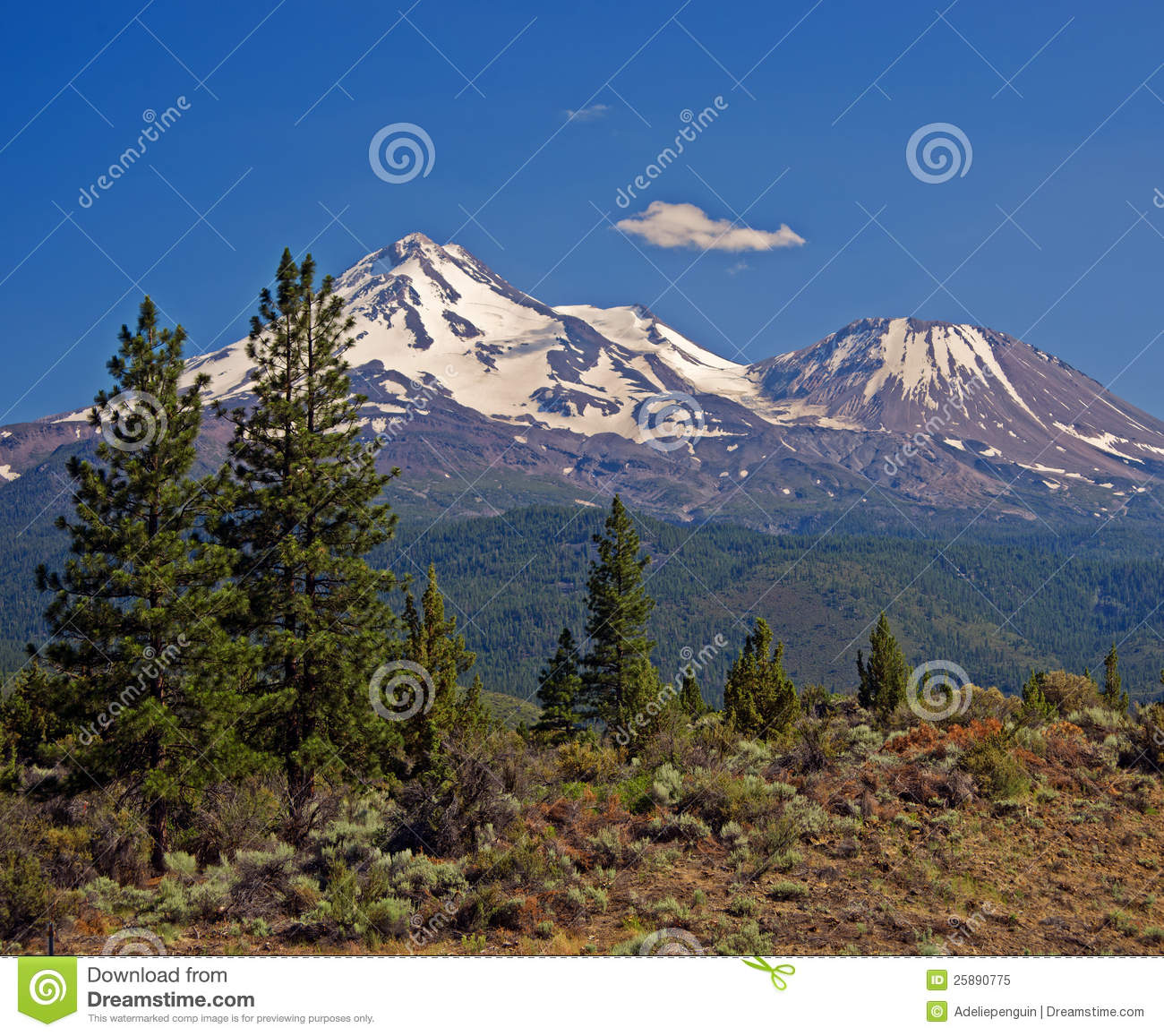 Mount Shasta, Cascade Mountains, California Royalty Free Stock.