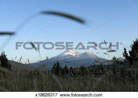 Picture of Mt. Shasta, California x18626317.