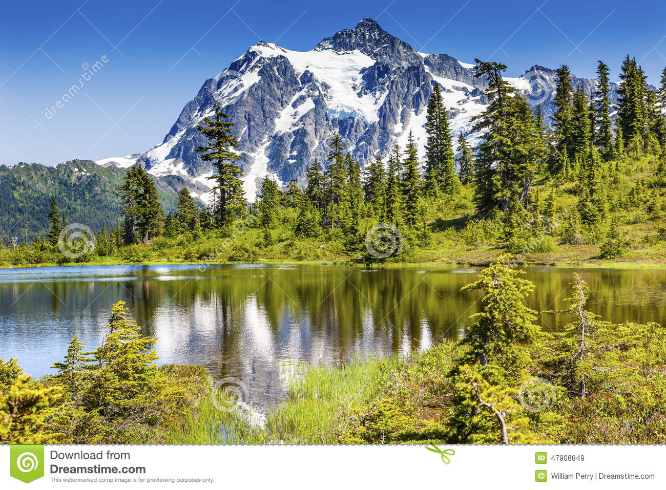 Mount Shuksan Glacier Evergreens Artist Point Washington State.
