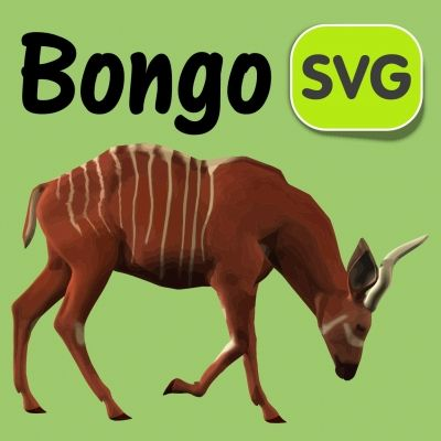 1000+ images about Bongo on Pinterest.
