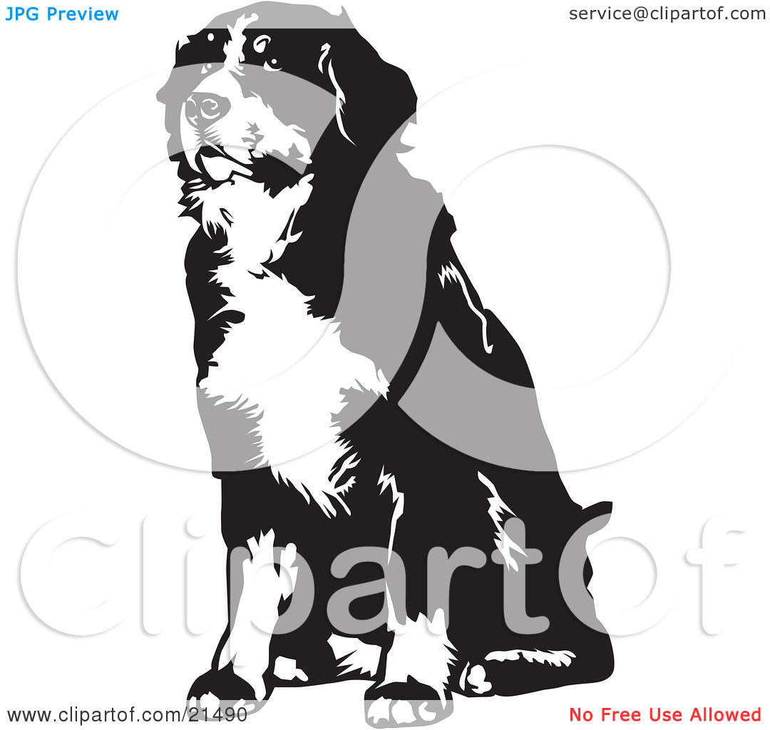 Clipart Illustration of a Seated Bernese Mountain Dog Facing.