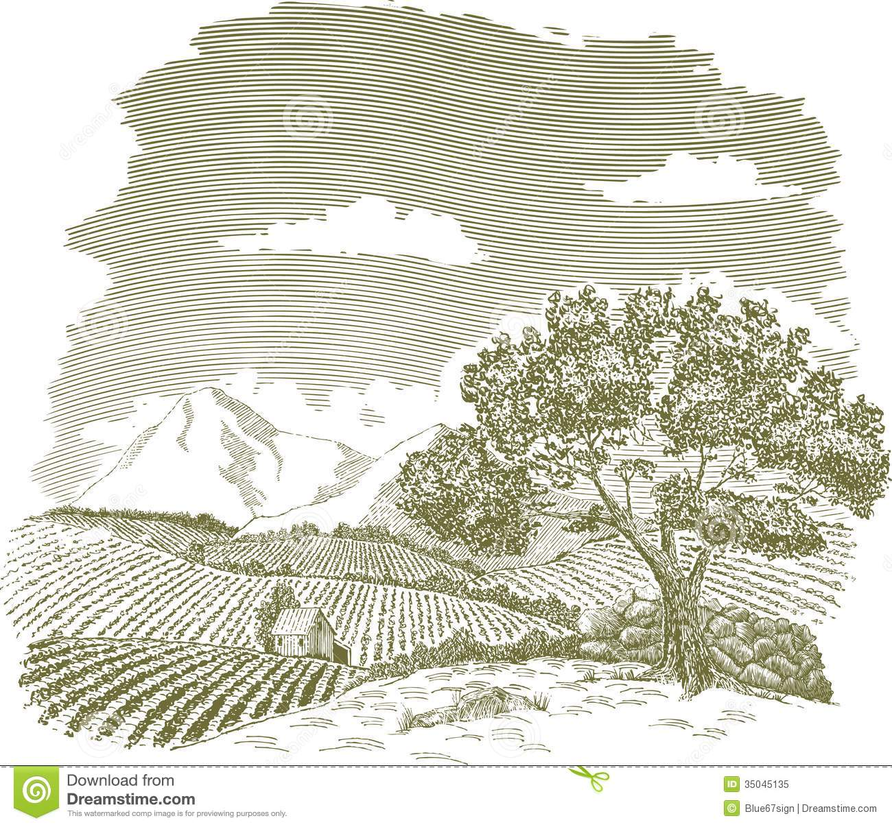 Mountain Farm Field Drawing Royalty Free Stock Photo.