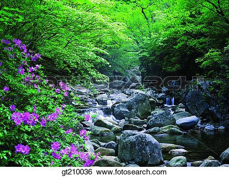 Stock Images of Korea, scene, scenery, landscape, valley, mountain.