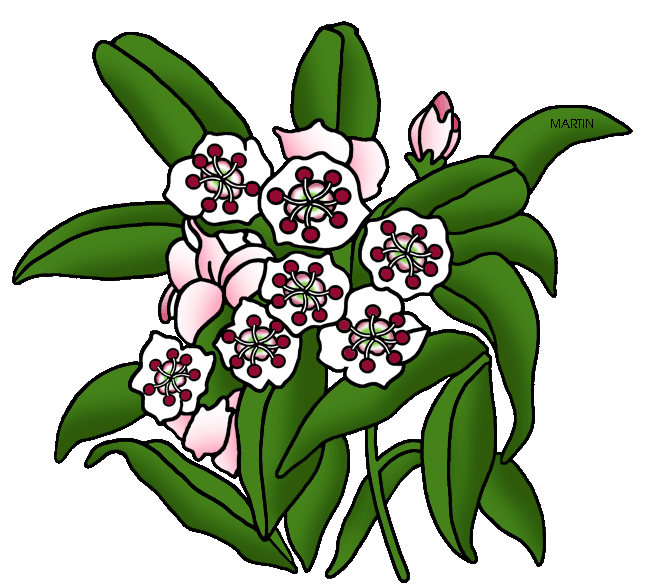 Mountain plant clipart - Clipground