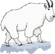 Clipart mountain goat.