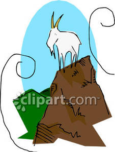 Mountain Goat Standing on a Rock.