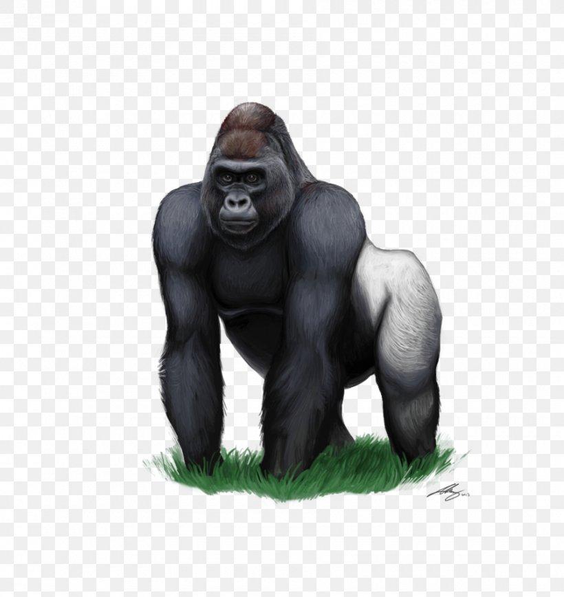Mountain Gorilla Clip Art, PNG, 900x953px, Gorilla, Ape.