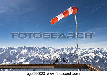 "Stock Photo of ""Germany, Bavaria, Nebelhorn, windsock and jackdaws."