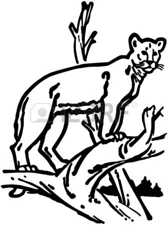Mountain lion clipart #2