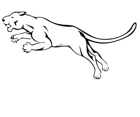 Mountain Lion Clipart Black And White.
