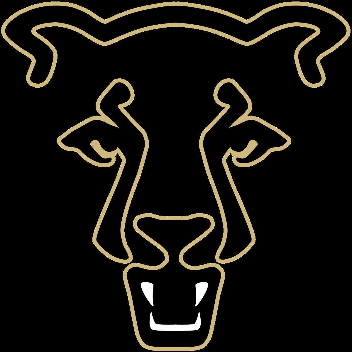 University of Colorado Colorado Springs Mountain Lion.
