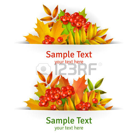 Mountain Ash Leaves Cliparts, Stock Vector And Royalty Free.