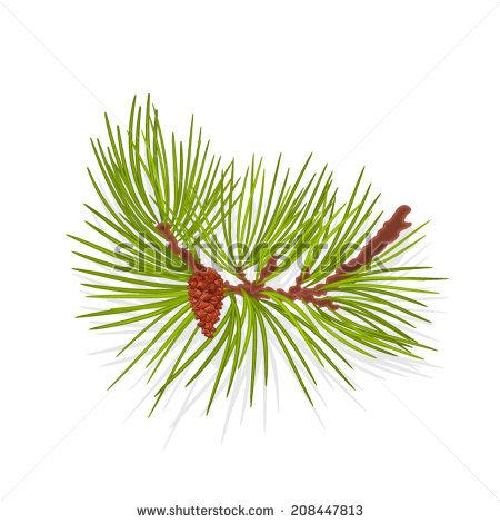 Mountain Pine Stock Vectors & Vector Clip Art.
